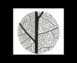 Logo Miya Forest