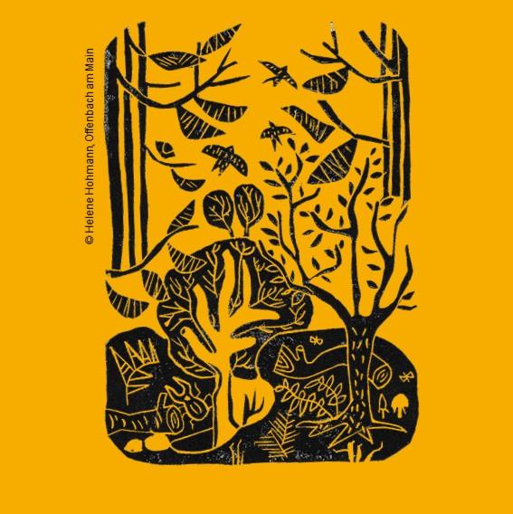 Bild Miniwälder